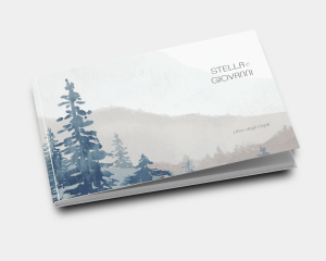 Painted Mountains - Guest book